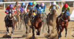 New Jersey Lawmakers Approve Bill Allowing Fixed-Odds Wagering on Horse Racing